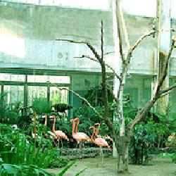 北旭野生动物乐园