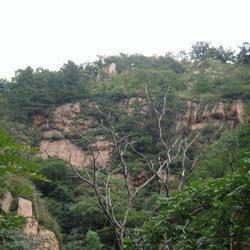 喇叭沟门原始次生林生态景区