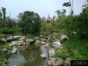 大学校园景观设计效果图