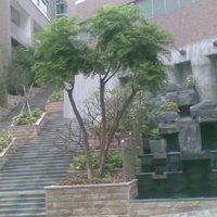 碧水龙庭实景图