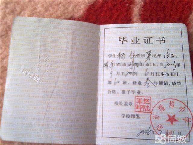 杨伟专业证书