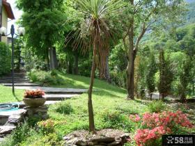 别墅景观花园效果图